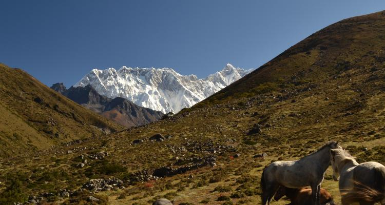 During Everest Base Camp trekking trail. 31