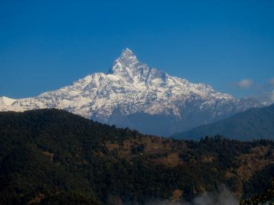 Mt Machhapuchhre view